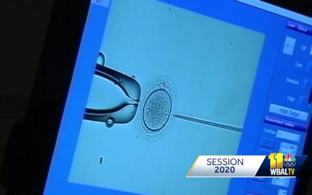 WBAL: House passes bill to extend insurance coverage for IVF to unmarried people
